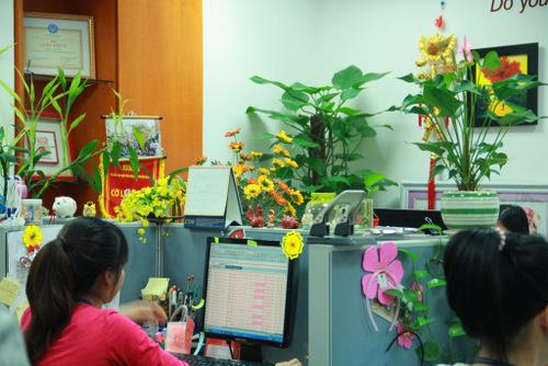 Nhìn ngắm 3 không gian văn phòng đình đám nhất ở Việt Nam-5