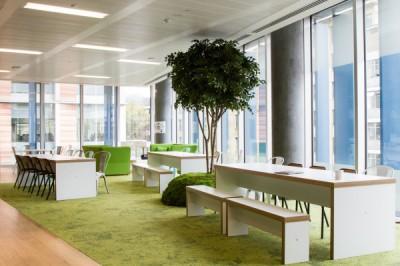 Gợi ý thiết kế văn phòng giúp tài lộc vào như nước