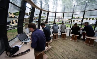 Thiết kế văn phòng xanh giúp tăng 15% hiệu suất công việc