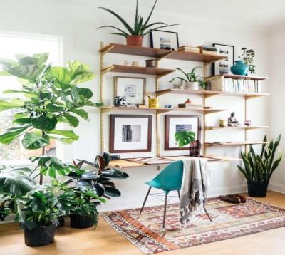 Cách sử dụng kệ trang trí trong không gian phòng làm việc tại nhà