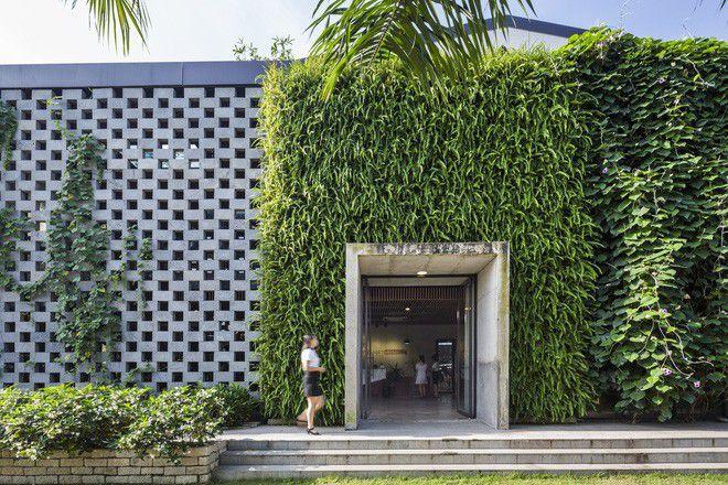 3 mẫu văn phòng làm việc xanh, thông thoáng ở Việt Nam