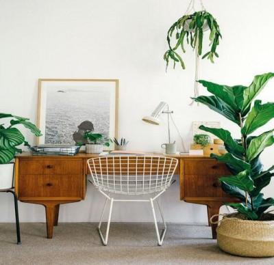 4 mẹo đơn giản để nâng cấp không gian làm việc tại nhà